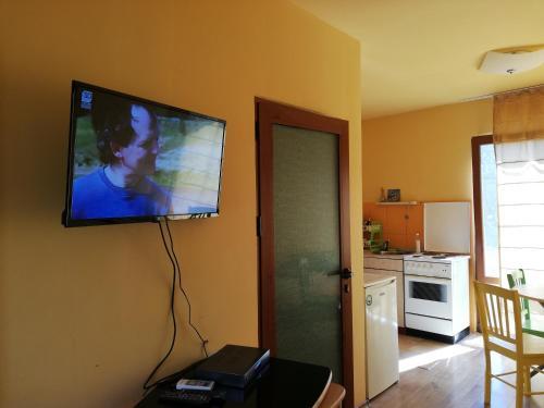 Телевизия и/или развлекателен център в Вила Каса Верде