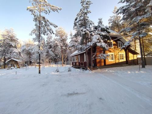 Territoriya Uyuta зимой