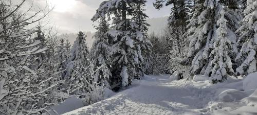 Le Domaine De Pairis im Winter
