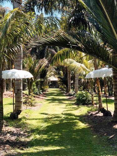 A garden outside Bali Garden