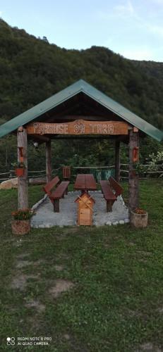 Paradise On Tara