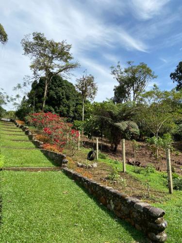 A garden outside Macas Glamping