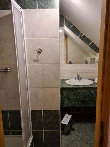 Kúpeľňa v ubytovaní Ferdinand Penzion