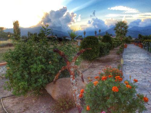 Κήπος έξω από το Kalloni Beach Villas
