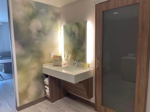 A bathroom at Wyndham Garden Orlando Universal / I Drive