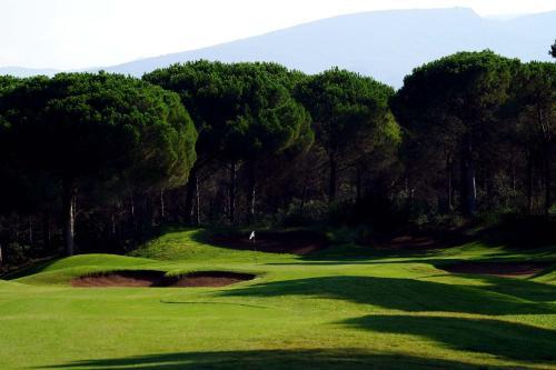 Attività di golf presso l'affittacamere o nelle vicinanze