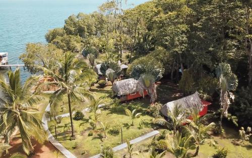 Vue panoramique sur l'établissement Dolphin Blue Paradise