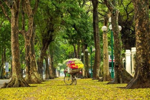 Biking at or in the surroundings of Hanoi Center Silk Hotel & Travel