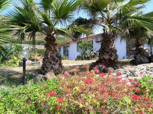 Giardino di B&B Glamping Semaforo Capo Sperone