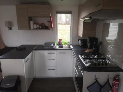 Cuisine ou kitchenette dans l'établissement Mobil home 6-8 personnes