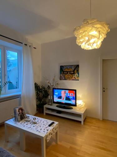 Televízia a/alebo spoločenská miestnosť v ubytovaní Tichý apartmán blízko centra