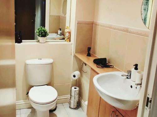 A bathroom at Reeves Apartment