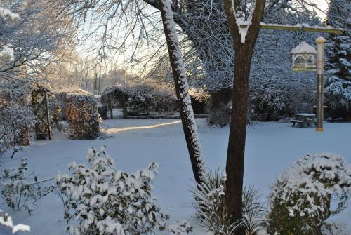 Elmfield during the winter
