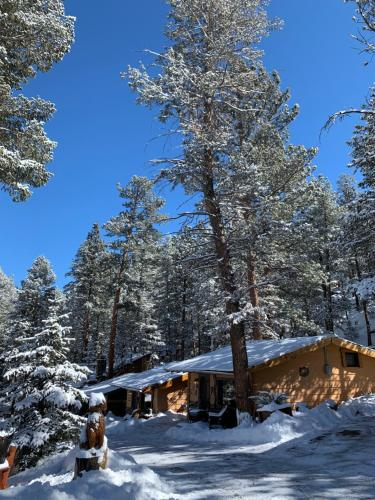Pine Haven Resort during the winter
