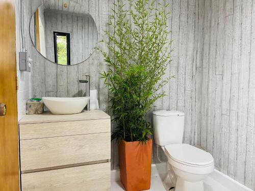 Un baño de La Madriguera