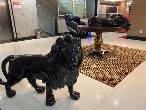 Mascotas con sus dueños en Amazônia Tower Hotel