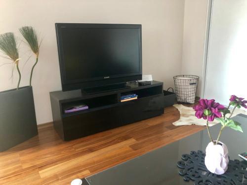 Televízia a/alebo spoločenská miestnosť v ubytovaní Apartmán SUZANNE