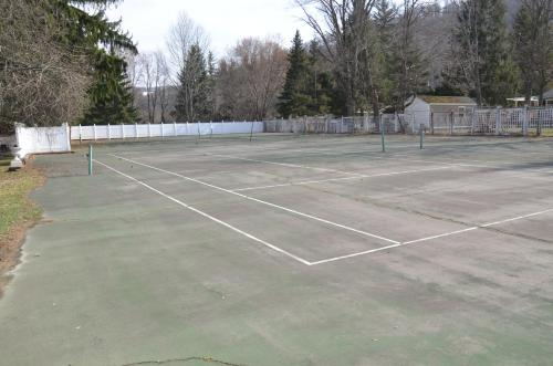 Tennis and/or squash facilities at Edelweiss Ski Lodge or nearby