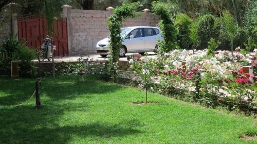 A garden outside Moorish House