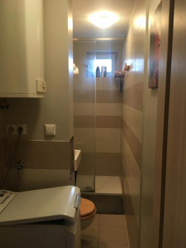 Łazienka w obiekcie Apartament Wrzeszcz
