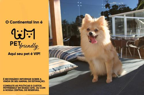 Pet or pets staying with guests at Continental Inn