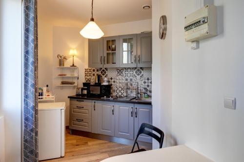 A kitchen or kitchenette at Le studio du Petit Palais Longchamp
