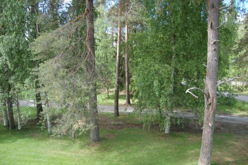 A garden outside Apartementos Saukkohaka