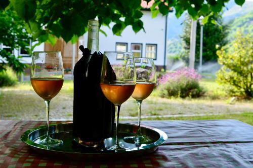 Bebidas em Solar da Castanha - Forest House