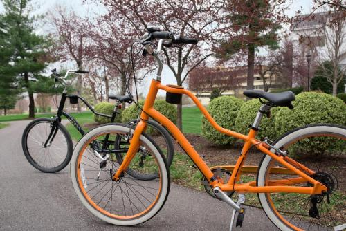 Biking at or in the surroundings of Lexington Griffin Gate Marriott Golf Resort & Spa