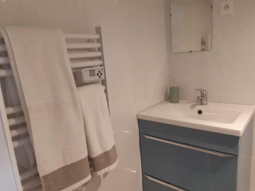 Salle de bains dans l'établissement Logement proche Lyon-aéroport-Centrale Bugey
