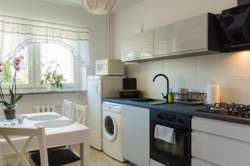 Kuchnia lub aneks kuchenny w obiekcie Apartament Ski Sudety