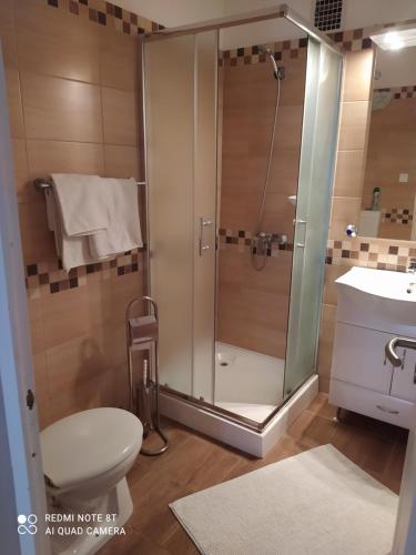 A bathroom at Forrás-G Vendégház