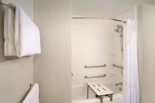 A bathroom at Holiday Inn Express & Suites New Braunfels, an IHG Hotel
