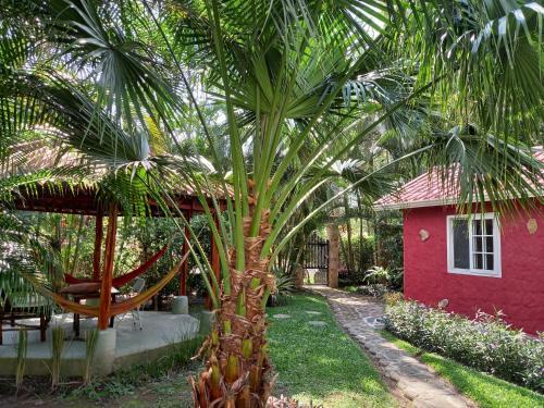 A garden outside Cabaña Villa Victoria