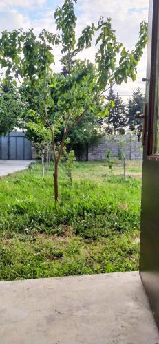 Um jardim em Rental house in village Bine