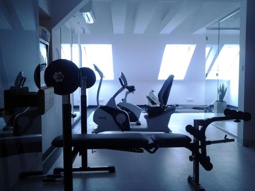 The fitness center and/or fitness facilities at Hotel Zamek Centrum