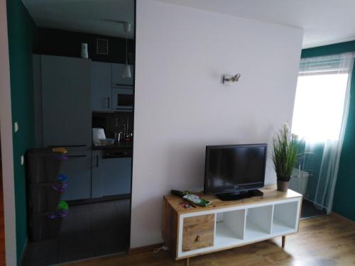 A television and/or entertainment centre at Apartament Swarzędz