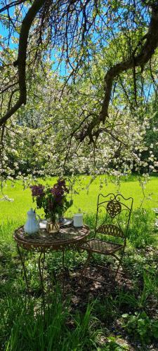 O grădină în afara Casa Porumbacu 295