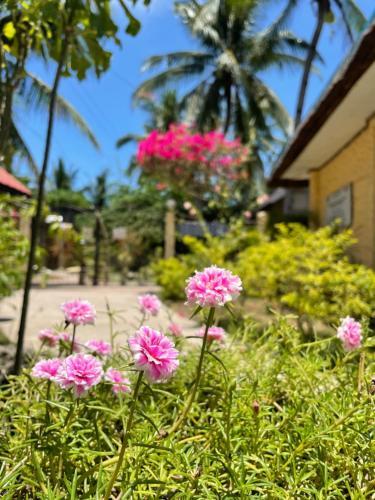 A garden outside Victory Seaside Home