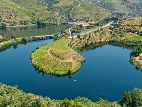 A bird's-eye view of Quinta do Tedo