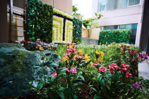 A garden outside Tmark City Hotel Sapporo