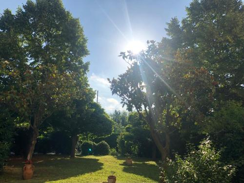 Сад в Europalace Hotel Todi