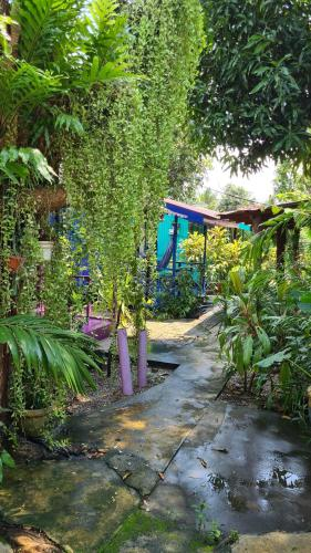 Children's play area at Gecko Guesthouse