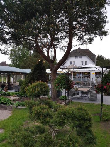 A garden outside Vienkiemis