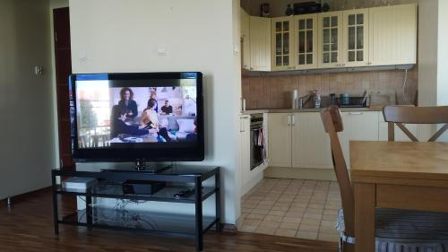 A television and/or entertainment centre at Holiday Apartment Polna St. Sopot