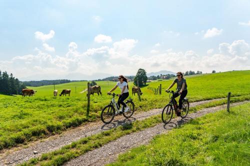 Biking at or in the surroundings of Das Weitblick Allgäu