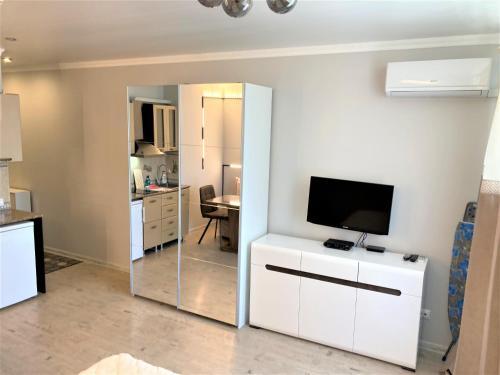Телевизор и/или развлекательный центр в Apartment Siyanie Sochi