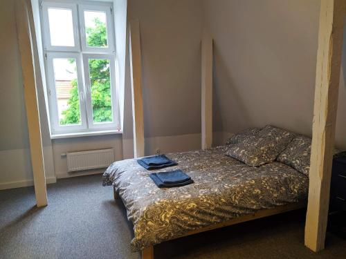 A bed or beds in a room at Apartament Oliwa