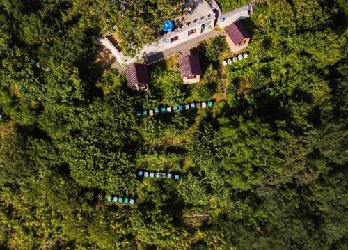 ARMBEE Honey Farm с высоты птичьего полета