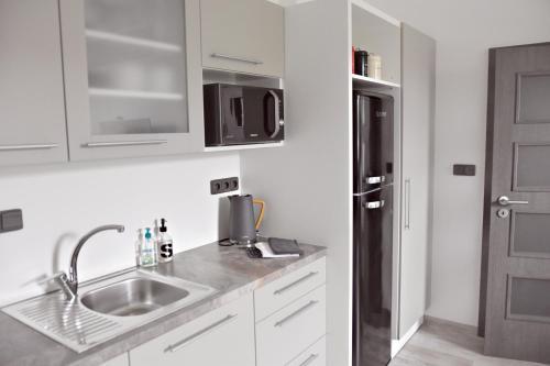 A kitchen or kitchenette at Apartmány Ve stodole